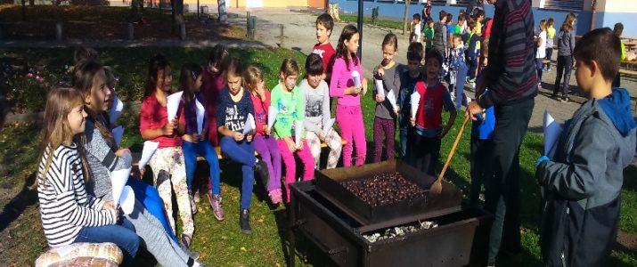 Kostanjev piknik učencev PB