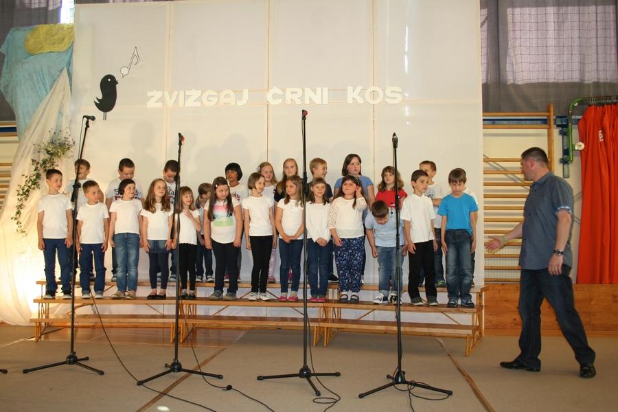 2015-05-29_zvizgaj-crni-kos_0012