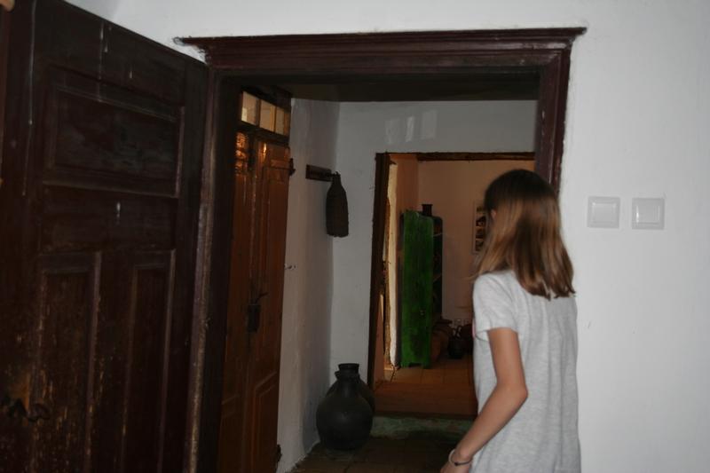 aqvilova-delavnice-2016-06-10_0011