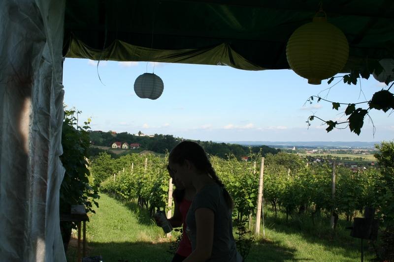 aqvilova-delavnice-2016-06-10_0028