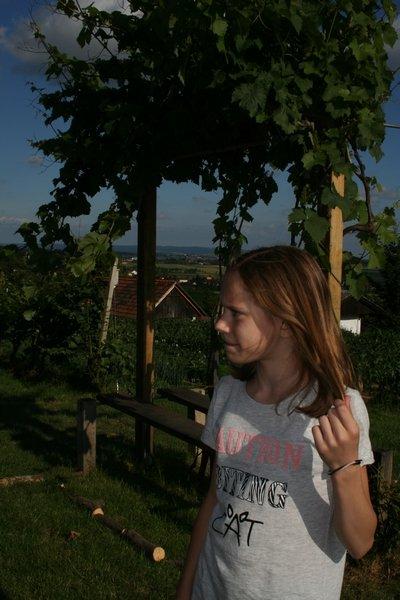 aqvilova-delavnice-2016-06-10_0033